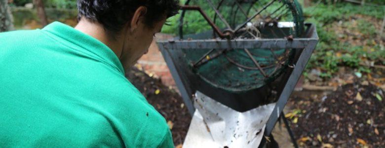 reciclagem de resíduos orgânicos